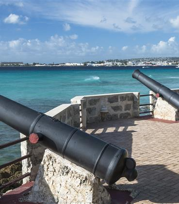 Canons on an old fort
