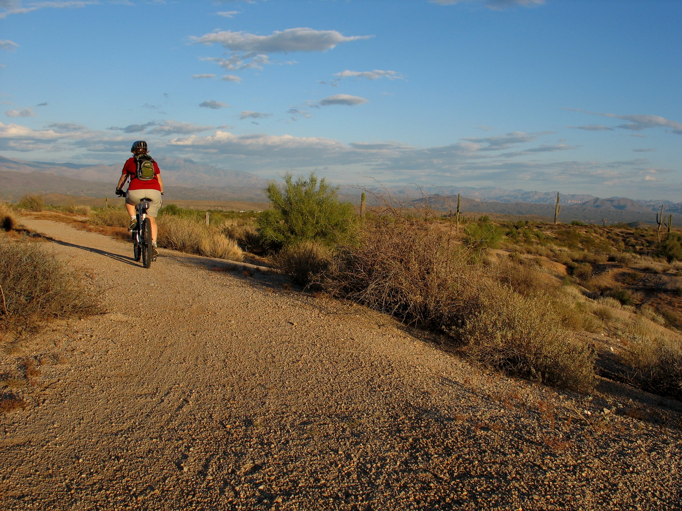 A man riding a bike in the American desert on an easy trail.