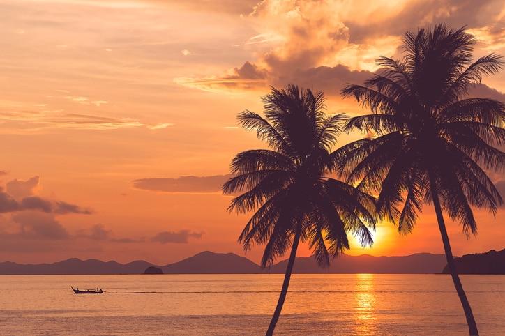 Orange sunset behind palm trees on the Big Island of Hawaii.