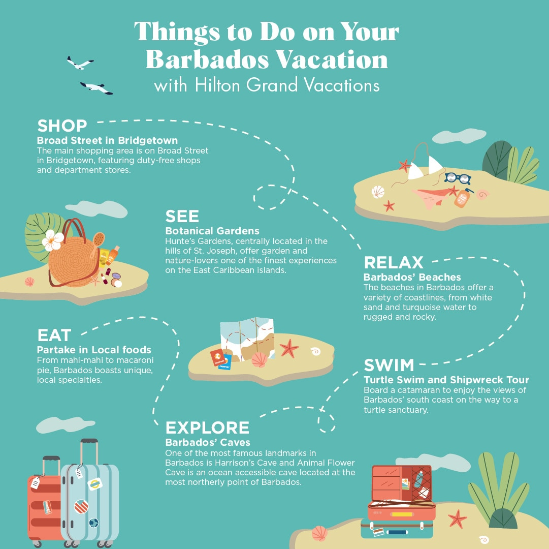 Infographic explaining 10 things to do on your Barbados vacation.