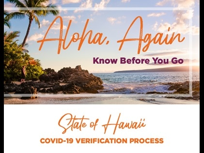 """Hawaiian beach with the text """"aloha, again, know before you go."""" Click for free printable."""