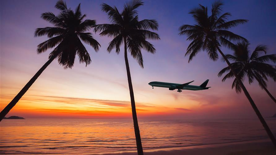 Silhouette of palm trees and airplane taking against Hawaiian sunset.