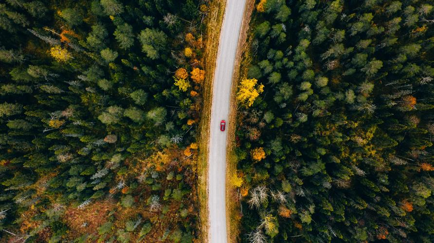 Aerial view of a car on a road trip driving through a wooded area.