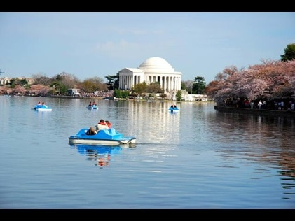 People enjoying paddleboats in Washington, D.C. with monuments in the distance.