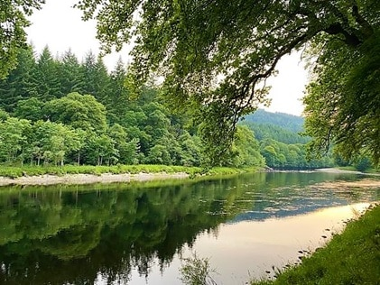 A shot of trees and a river on-site at Hilton Grand Vacations at Dunkeld, in Scotland.