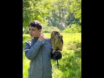 Teenage boy holding a bird of prey during Elite Falconry demonstration in Dunkeld, Scotland.