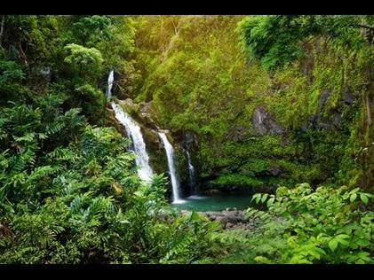 Side by side waterfalls amidst lush greenery Maui, Hawaii.