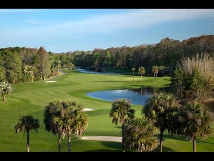 Aerial shot of Florida golf course.