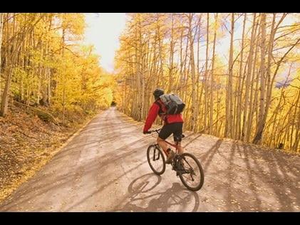 Cyclist on a fall foliage tree-lined mountain road.