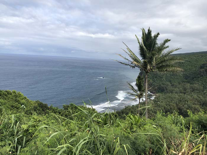 Views of the Pololu Valley Lookout while visiting Kings' Land by Hilton Grand Vacations