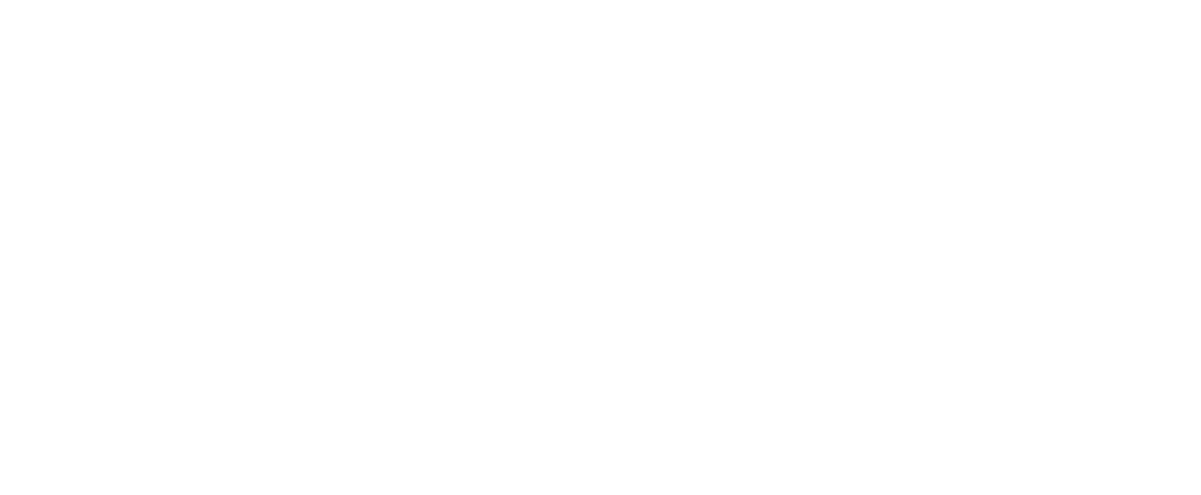 hampton_logo10