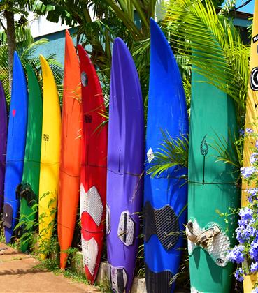 Surf boards on a Hawaiian beach