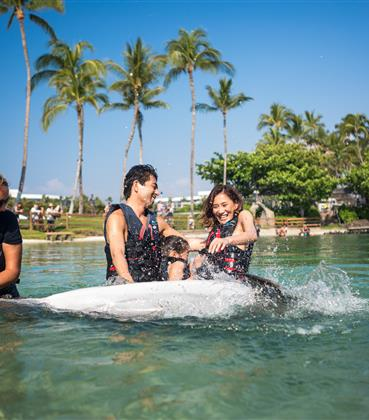 Family swimming in pool with dolphins in Hawaii.