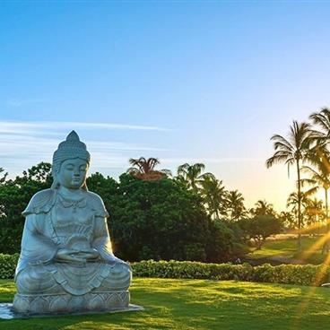 Sunrise photo of statue in front of a Hawaiian forest